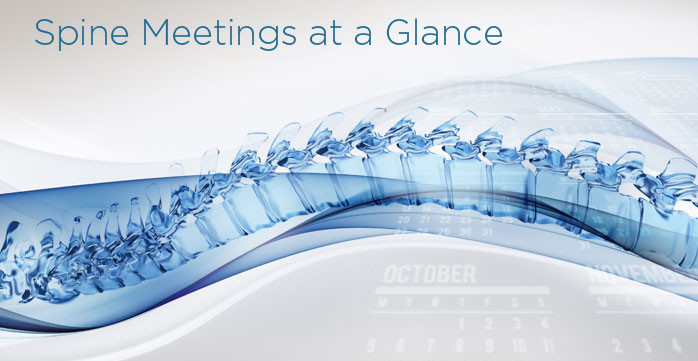 CME Spine Meetings - Courses at a Glance